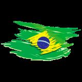 https://www.tsvtransportes.com.br/wp-content/uploads/2018/09/adesivo-bandeira-do-brasil-estilosa-160x160.png